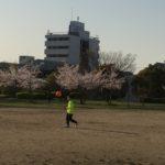 春のサッカー朝練
