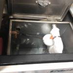 冷却水の入れ替え